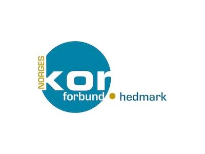 NK Hedmark