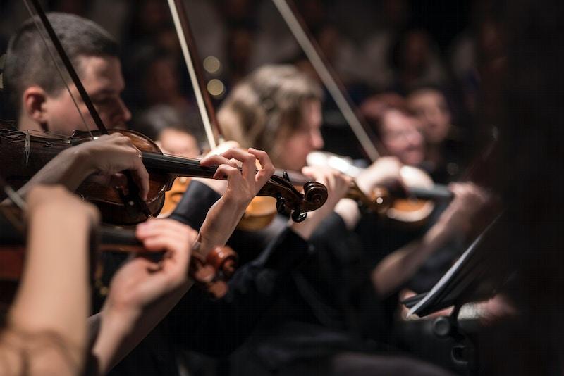 Orkester fiolin